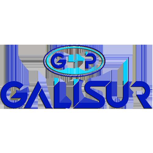 logo-galisur
